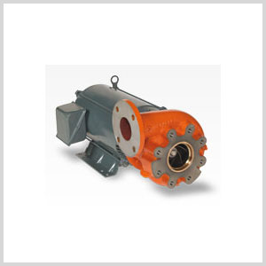 Berkeley Pump Close-Coupled Electric Motor Drive Series