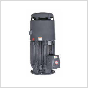 Vertical Solid Shaft Electric Pump Motor