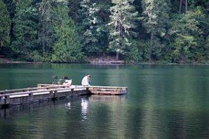 Well_Water_Pump_Service_Battle_Ground_Lake_State_Park Washington